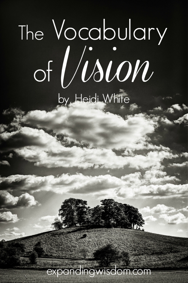 the vocabulary of vision